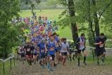 maratona (18)